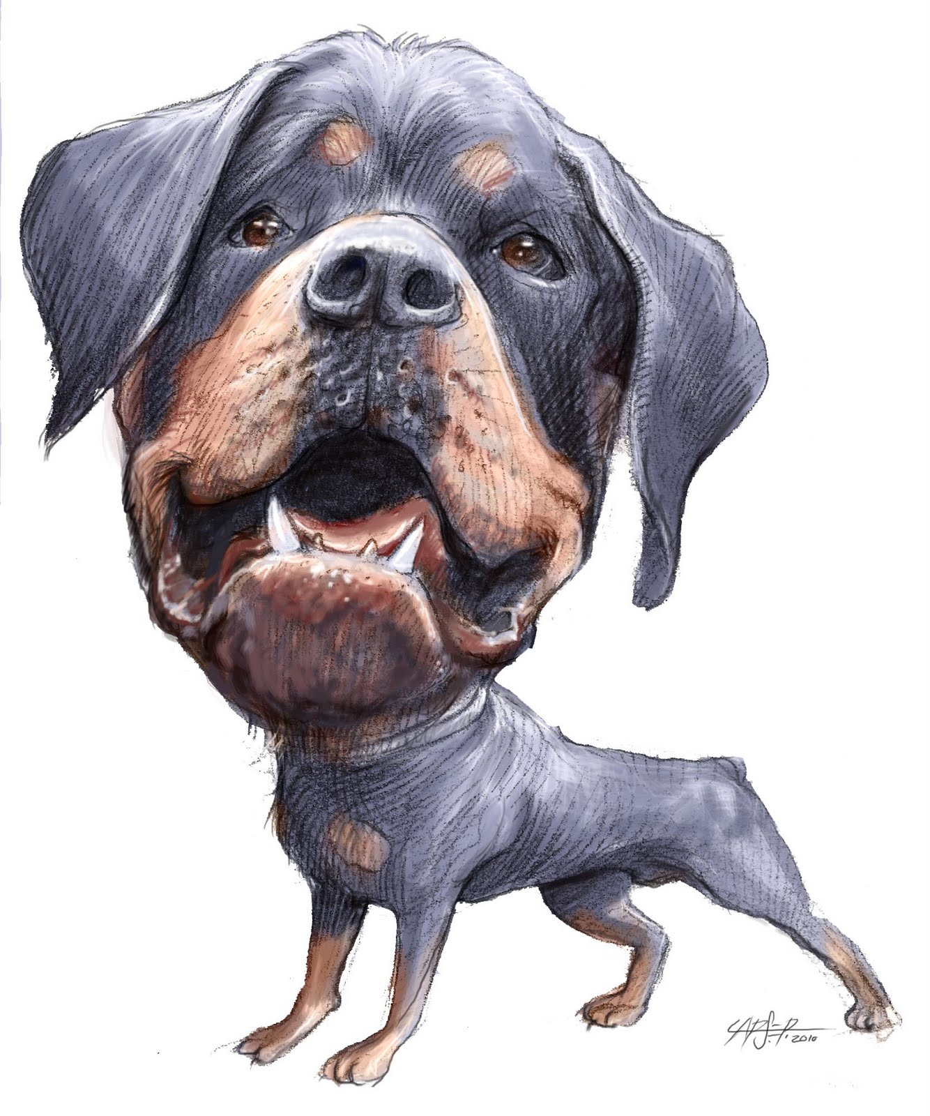 Rottweiler Rescue Rendering For A Logo Lerarts